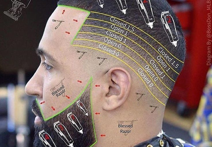 Barbernomics: รูปถ่าย