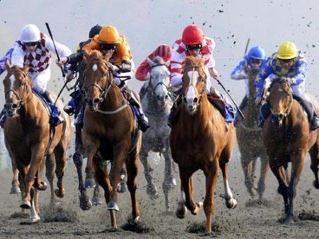 เคล็ดลับสำหรับการเดิมพัน – เกมการวางเดิมพันม้า ผู้ช่วยผู้ช่วยขี่ม้า …